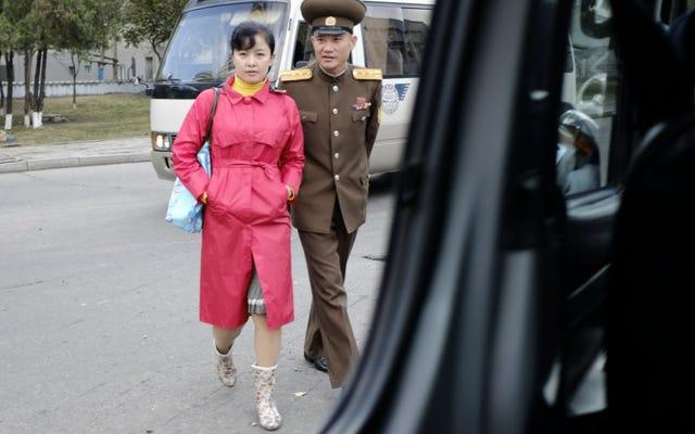 伝えられるところによると、北朝鮮は医師による中絶、子宮内避妊器具の埋め込みを禁止している