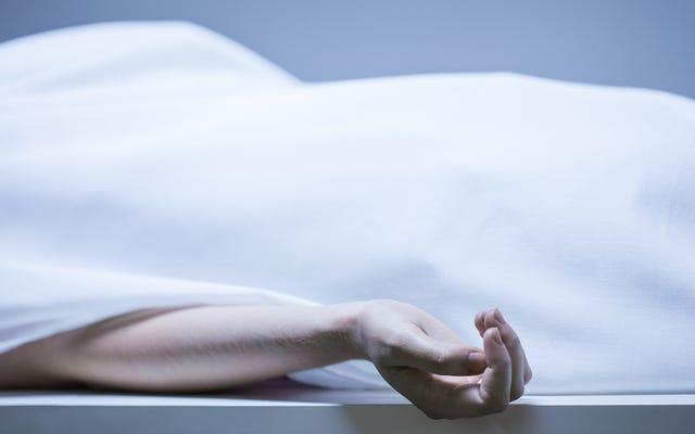 Hallan viva a mujer presuntamente asesinada hace 42 años, mejor que la mayoría de los cadáveres