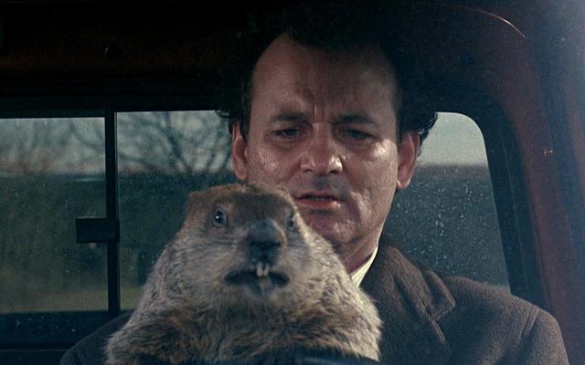 全米脚本家組合によると、史上最もおかしな7本の映画