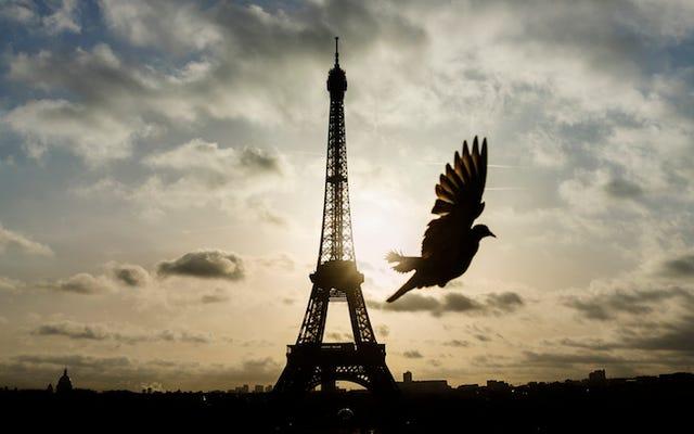 La segnalazione di errori porta alla speculazione che i terroristi abbiano utilizzato PS4 per pianificare gli attacchi a Parigi