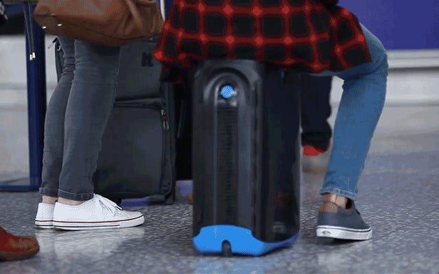 Наконец-то появилась взрослая версия этого чемодана для верховой езды