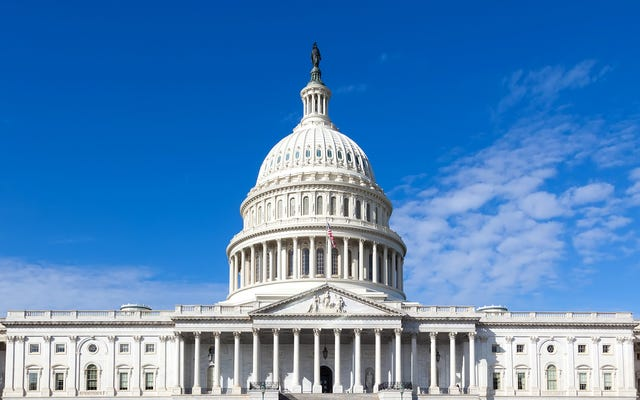 विशेषज्ञ पुष्टि करते हैं कि कार्यात्मक लोकतंत्र को आम तौर पर वोटिंग अधिकारों की देखभाल करने के लिए कम से कम एक पार्टी की आवश्यकता होती है