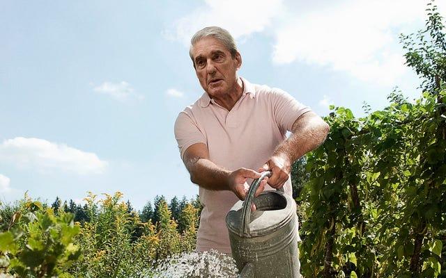 Mueller fasst plötzlich Lösung für Russland-Kollusionsfall beim Gießen von Pflanzen zusammen