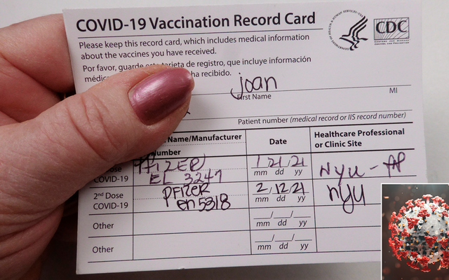 Une étude révèle que le virus est souvent trompé par une fausse carte de vaccin