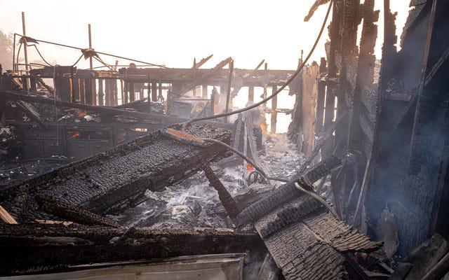 Những người mua nhà tuyệt vọng ở California bị mắc kẹt trong cuộc chiến đấu thầu vì phần còn lại của ngôi nhà nông trại bị tính phí