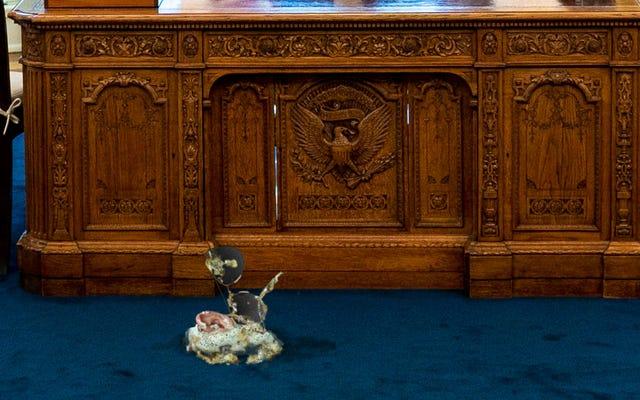 Oficina oval cerrada por limpieza después de que el mayor Biden vomitara un agente del servicio secreto parcialmente digerido sobre una alfombra
