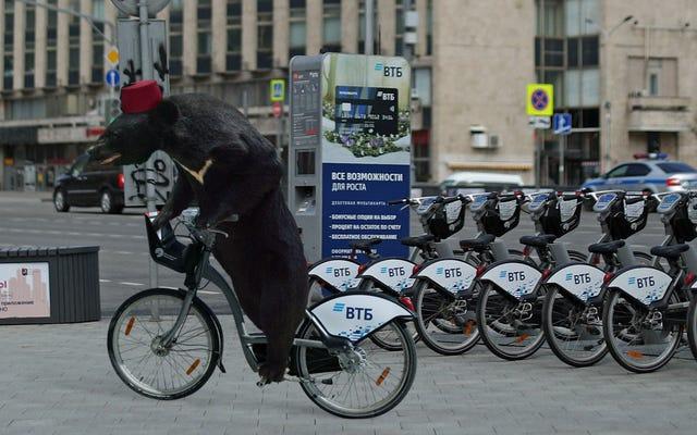 मॉस्को ने सर्कस बियर के लिए नया शहरव्यापी बाइक शेयरिंग कार्यक्रम शुरू किया