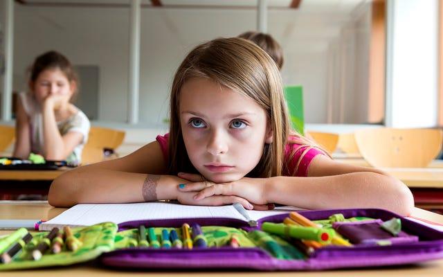 Nuevo plan de estudios escolar, solo 6 horas seguidas de mirar con la boca abierta la bandera estadounidense