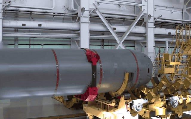 これは、新しい検出不可能なロシアの核魚雷であるポセイドンの本当の外観です