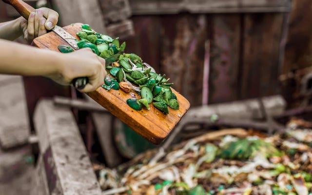 堆肥化に最適な食品と最悪の食品
