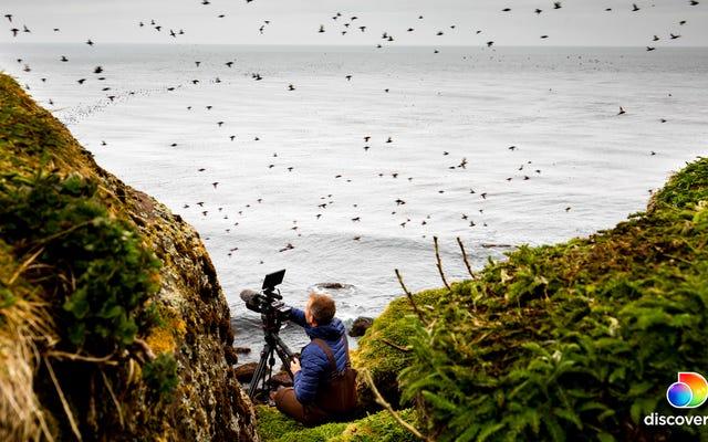The Last Unknown lleva a los espectadores a algunas de las islas más remotas de la Tierra