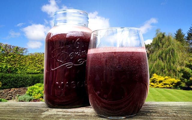 Rien contre la limonade, mais Blueberry Switchel le bat d'un mile