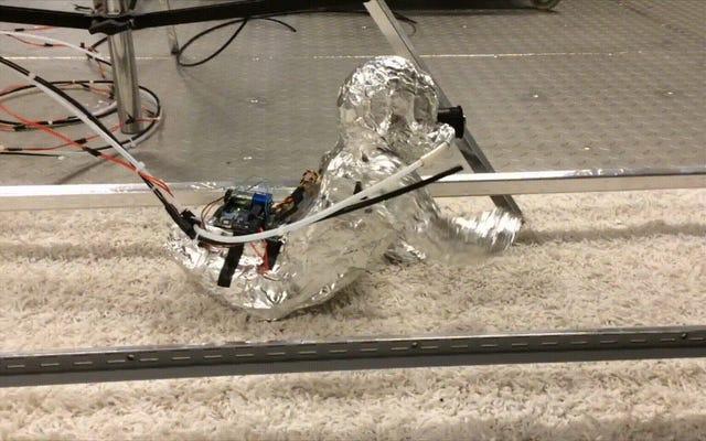 不気味な這うロボットの赤ちゃんは、カーペットが嫌だと私たちに思い出させます