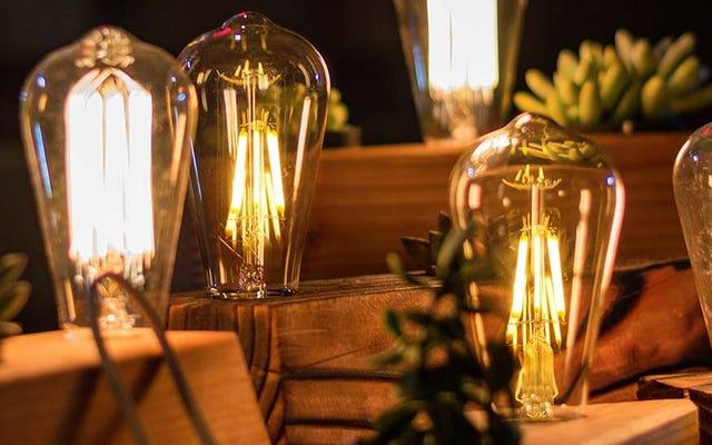 L'inventeur de ces ampoules hipster écologiques se prépare à poursuivre tout le monde