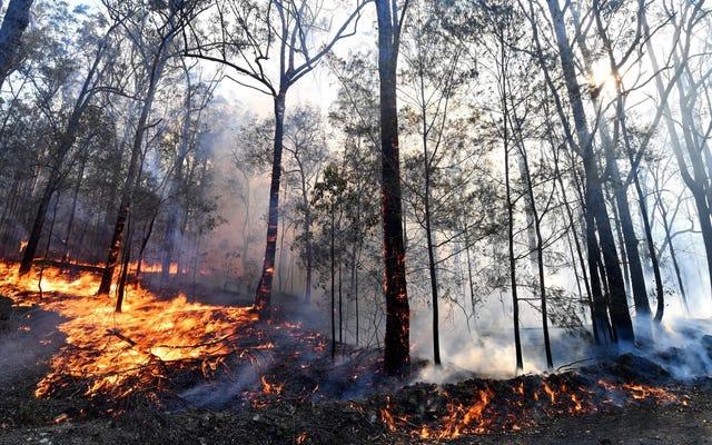 オーストラリアの恐ろしい山火事は、気候変動がここにあることを私たちに思い出させます