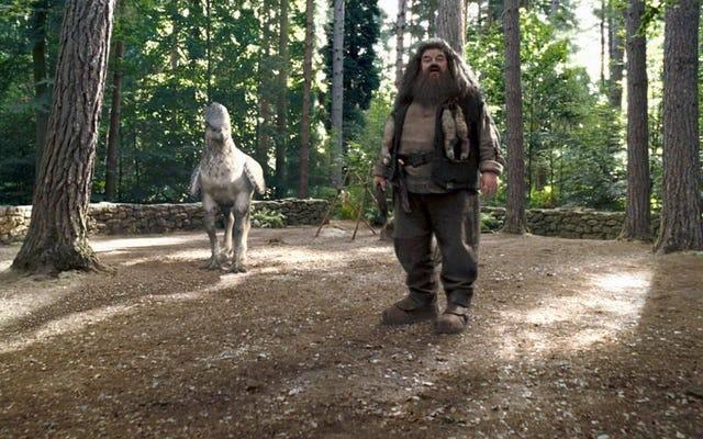 ハグリッドは、ハリーポッターアトラクションの最新の魔法の世界で魔法の乗り物をリードします