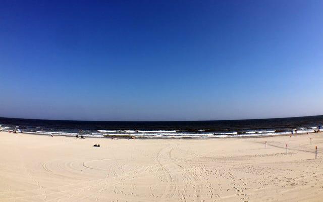 これはビーチに行くのに最適な週です