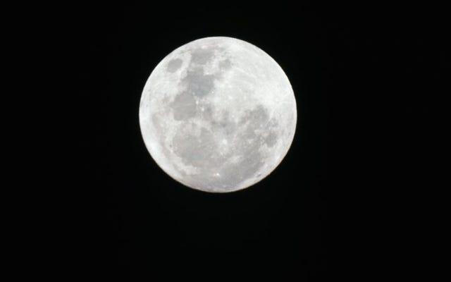 一部の厄介な古い科学者は、ニールアームストロングの月のうんちを手に入れたいと思っています