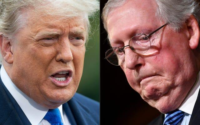 ミッチ・マコーネルは、トランプが彼を「政治的ハック」と呼んでいるにもかかわらず、彼は「絶対に」別のトランプ大統領を支持すると言います