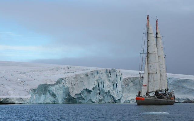 世界一周探検隊が海で20万種のウイルスを発見