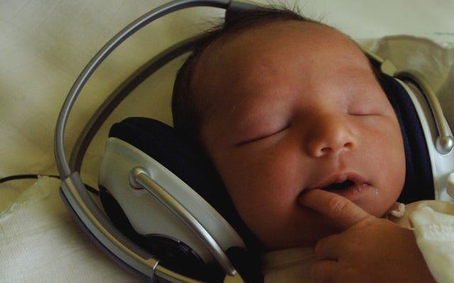 胎児がアルバムをリリースし、fetuscoreへの道を開く