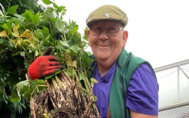 Büyük sebzelerin tartışmasız kralı Gerald Stratford ile tanışın Twitter