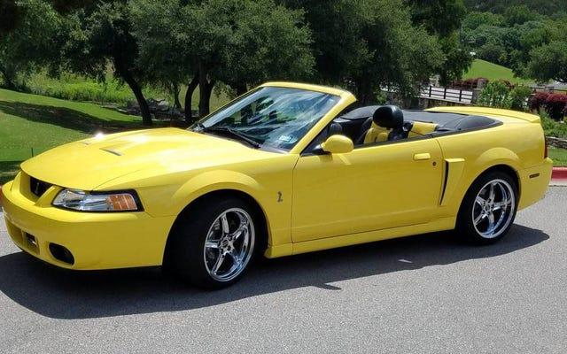 19,900ドルで、あなたはこの2003年のフォードマスタングコブラにその牙をあなたの財布に沈めさせますか?