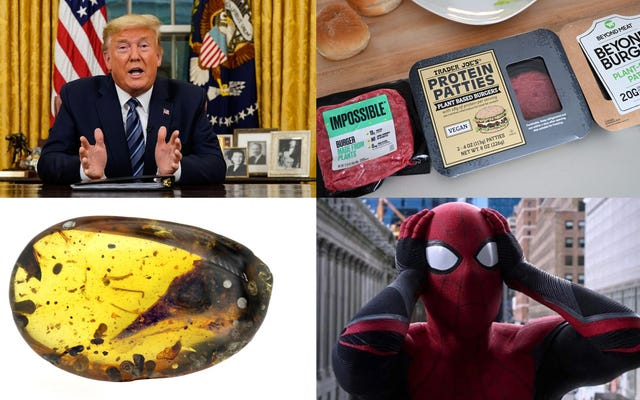 Le coronavirus de Trump se trouve, un faux test de goût de viande et un fossile vraiment étrange: les meilleures histoires de gadgets de la semaine