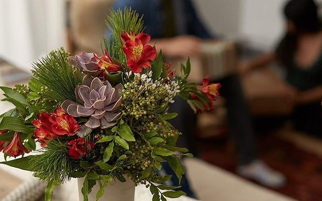Bouqs'tan Bu İndirimle Halkınız İçin Çiçek Alın