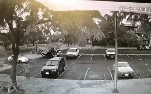 Un voleur utilise un chariot élévateur pour voler une voiture Honda Civic Project Père-fils