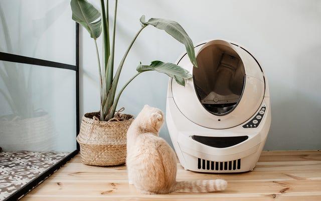 Le Litter-Robot 3 est un vaisseau glorieux pour que votre chat commette des crimes de guerre