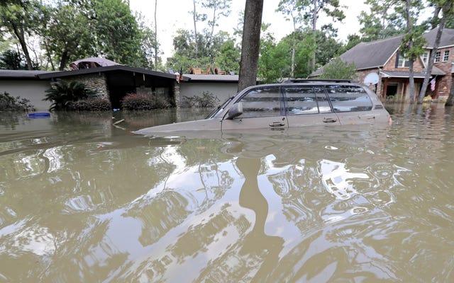これはハリケーンハービーの後に浸水した50万台の車両に起こることです