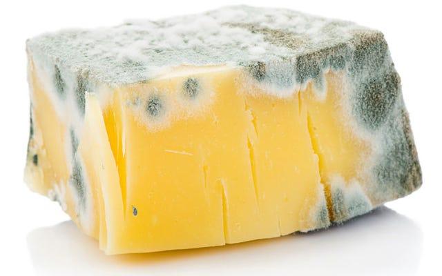 チーズの一部だけにカビがあるのに、なぜチーズ全体を捨てることを勧めるのですか?