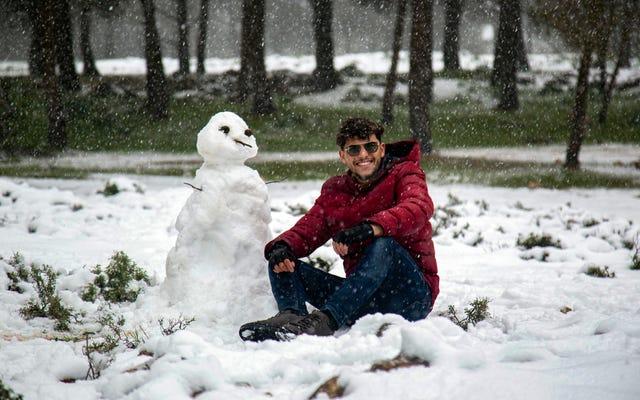 Bliski Wschód pokryty jest rzadkimi opadami śniegu