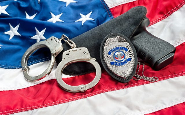 人種差別、残虐行為、性的暴行で告発されたフロリダ州警官が今年の役員に指名