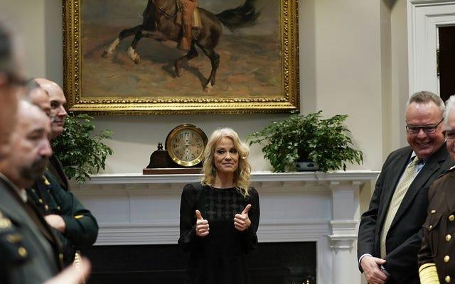 ケリーアン・コンウェイが連邦法に違反し、法を愛する大統領からの懲戒に直面することは確実です