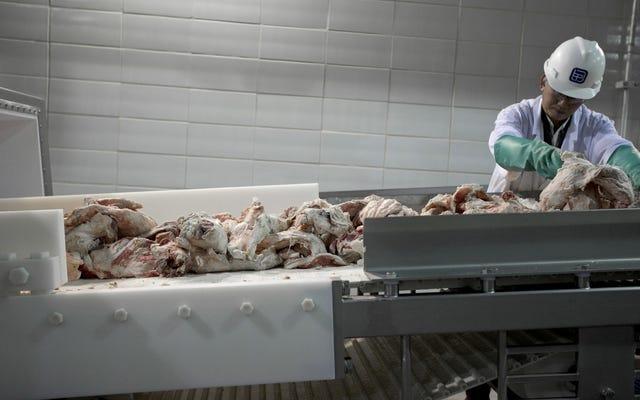 कितना बड़ा मांस है जलवायु डेनियल फंडिंग और ग्रह प्रदूषण