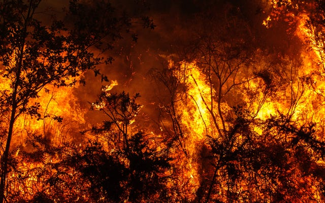 Wildfire Makes List Of Spots To Hit On Return Trip To California Next Summer
