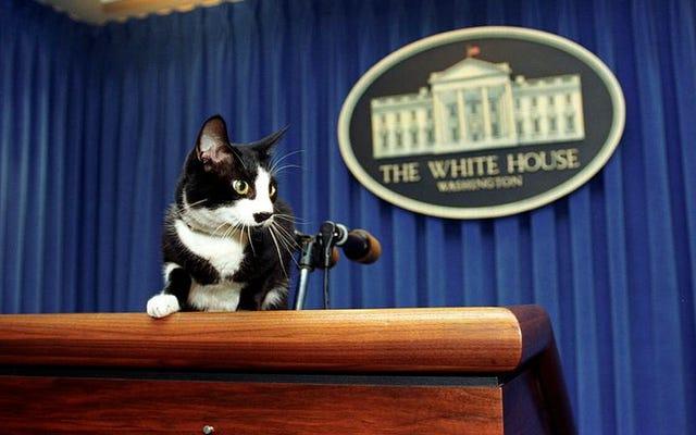 Salut à la liste des animaux de compagnie présidentiels