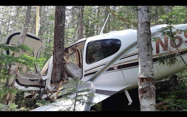 森の中で飛行機を墜落させて撮影を始めた男のvlogは、ファウンドフッテージの映画です。