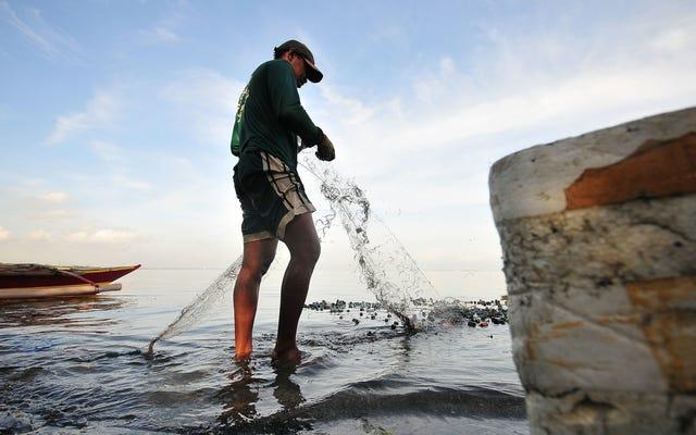 海のゴミの実際の発生源(ストローではない)と戦う方法