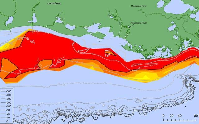 La plus grande `` zone morte '' jamais enregistrée au large des côtes de la Louisiane
