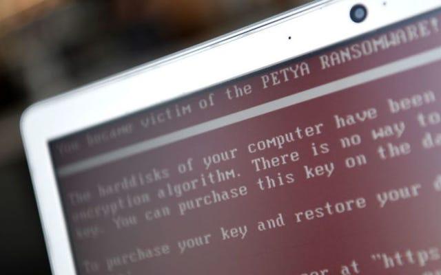 Petya fidye yazılımı üreticileri, ele geçirilen tüm dosyaları serbest bırakmak için 250.000 ABD doları istiyor