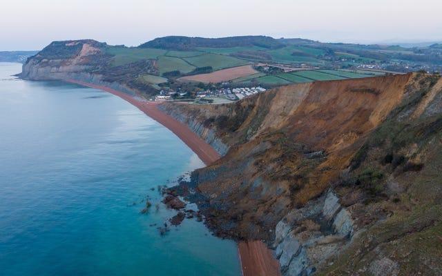 英国のジュラシックコーストに沿った大規模な落石は、化石ハンターに恩恵をもたらす可能性があります