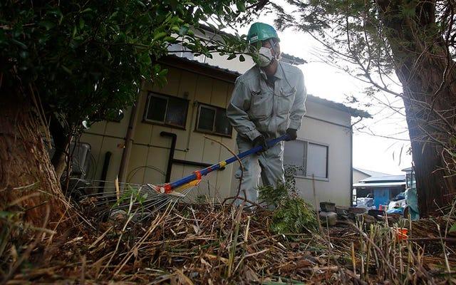 Kami Akan Selalu Dapat Menangkap Pokemon di Fukushima
