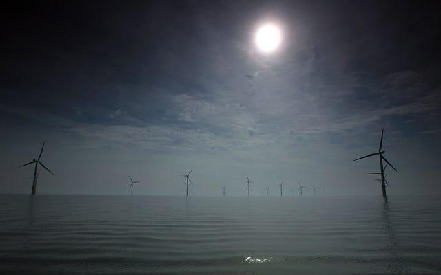Морской ветер нависает над проблемой редкоземельных металлов