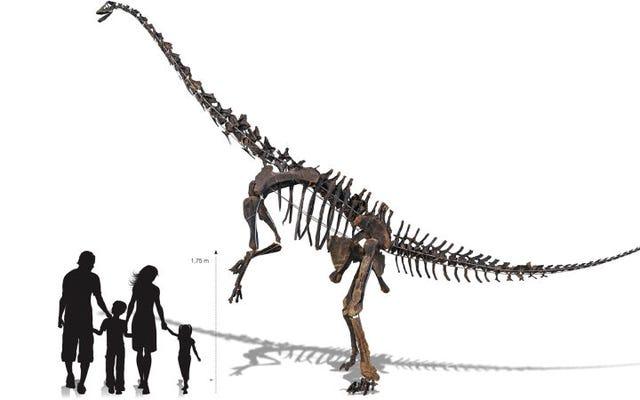 Bộ xương khủng long khủng long này có thể là của bạn, bạn chỉ cần vài triệu đô la