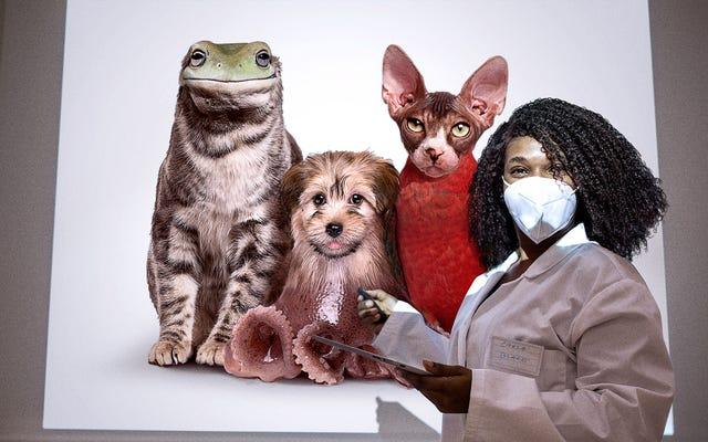Eksperci medyczni mają nadzieję, że edycja genów wkrótce pozwoli chorym dzieciom na posiadanie bardzo dziwnych zwierząt domowych