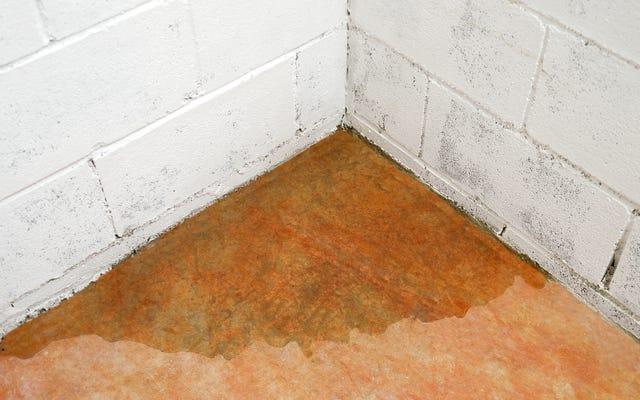Comment éviter que votre sous-sol ne soit inondé lorsque la neige et la glace commencent à fondre