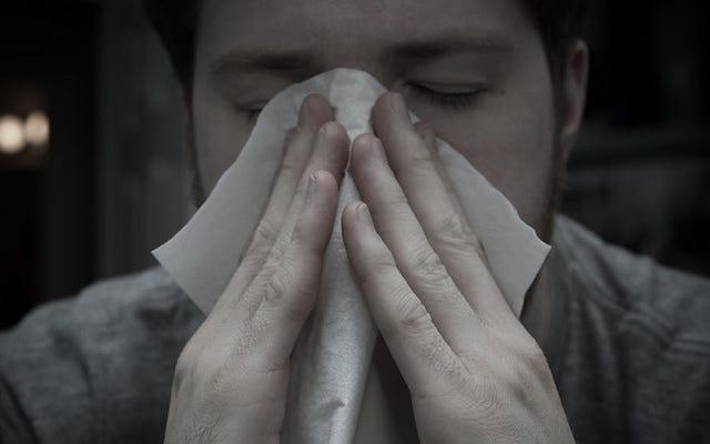 Les sprays nasaux pourraient aggraver vos allergies